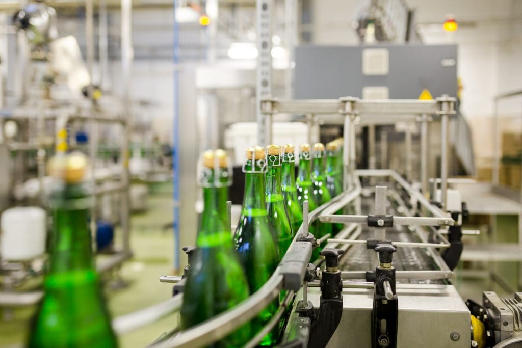 End of Champagne making process. Champagne bottles on conveyer belt during bottling process