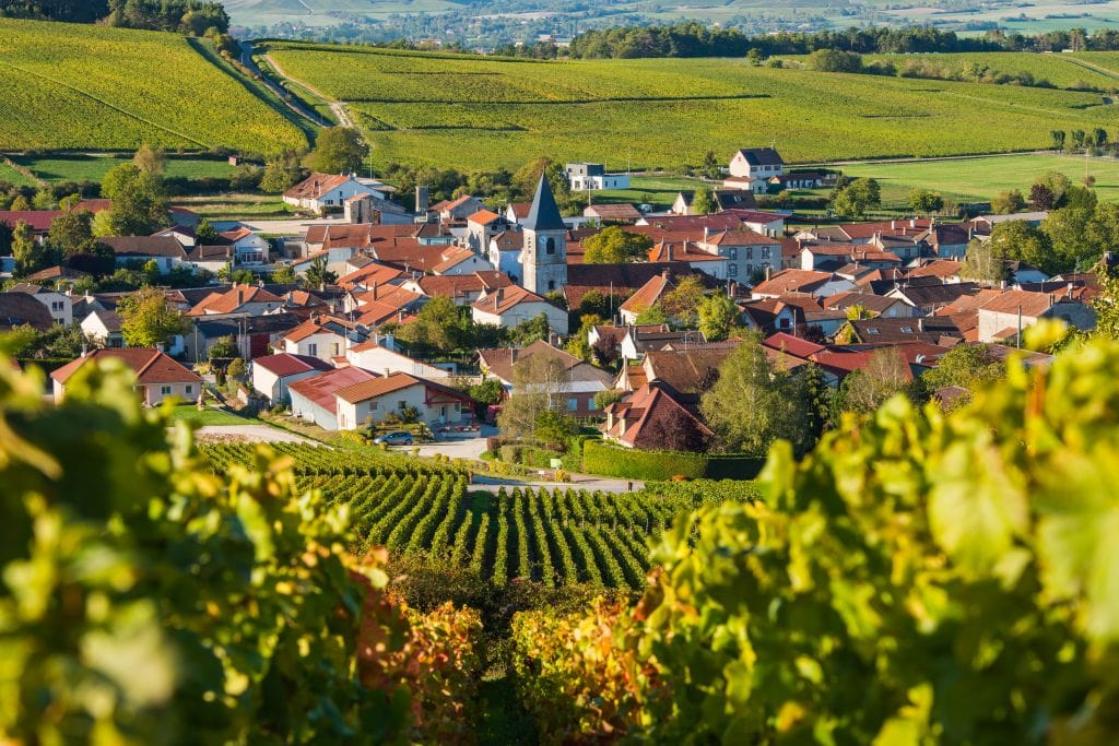 Village and vineyard in Champagne, France